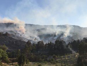 Bucak yangınında 53 ev boşaltıldı