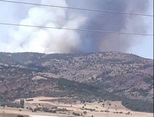 Burdur'un Tefenni ilçesinde orman yangını