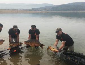 Sazan balığı tutma yarışı 6 Eylül'de başlayacak