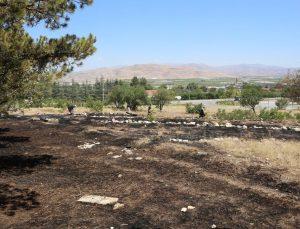 Tefenni ilçesindeki yangın ormana sıçramadan söndürüldü
