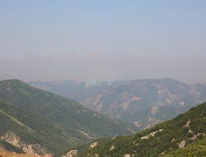 Tunceli'deki yangınlara müdahale sürüyor