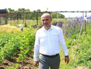 Altınova, AGRİCİTİES'e üye oldu