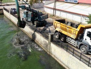 Balık ölümlerinin artmaya başladığı Akarçay'da temizlik çalışması başlatıldı