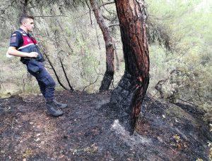 Karabük'te örtü altı yangını büyümeden söndürüldü