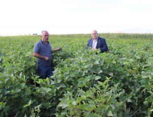 Karaman'da ilk defa bir besici tarafından silajlık soya ekildi