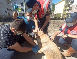 KASMİB, afet bölgesinde hizmetlerine devam ediyor
