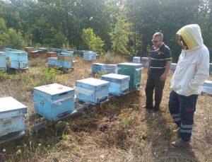Kırklareli'nde meşe balı üreticileri bilgilendirildi