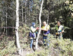 Kütahya'da ağaçlandırma ve bakım çalışması