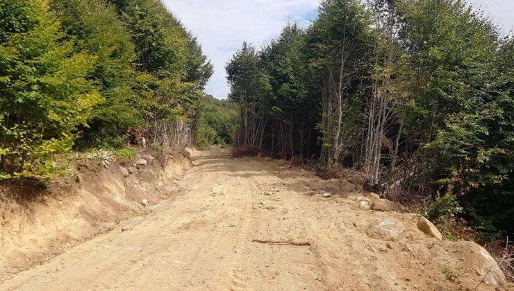 Kütahya'da yeni orman yolları açılıyor