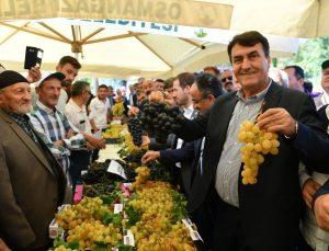 Osmangazi'de 'üzüm' vakti