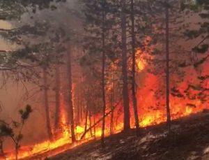 Sarıkamış Ormnları'nda korkutan yangın, ekiplerin müdahalesi sürüyor