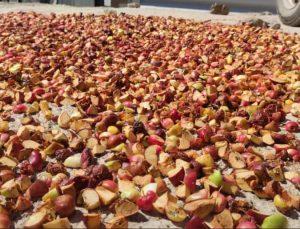 Şırnak ve Hakkari köylerinde kışa hazırlık