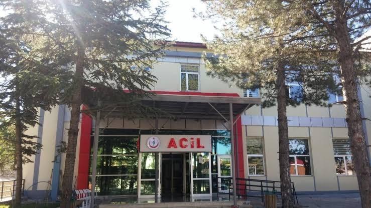 Tunceli'de domuz vatandaşa saldırdı
